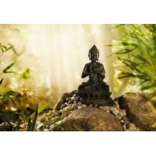 1-610 Buddha