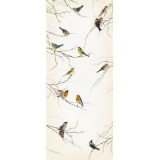 2-1014 Birds