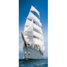 2-1017 Sailing Boat