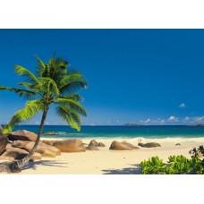 4-006 Seychellen