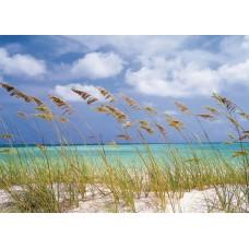 8-515 Ocean Breeze